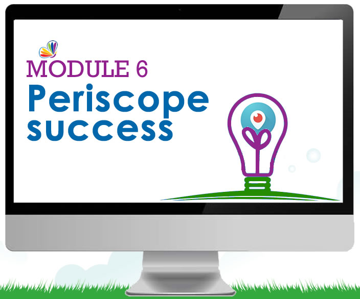 Smart-periscope-success